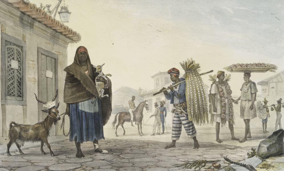 Voyage Pittoresque et Historique au Bresil Vol. 2 - Maison a Louer, Cheval et Chevre a vendre (1835)