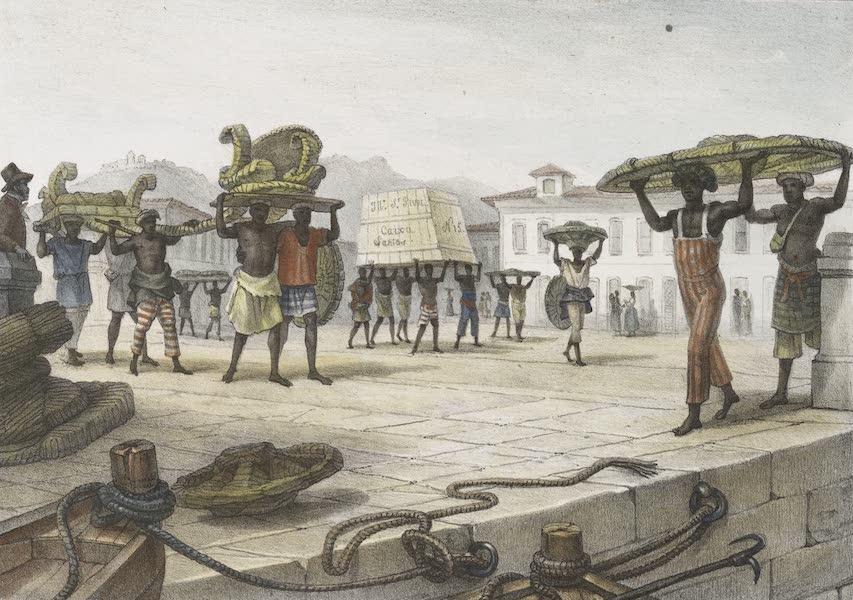 Voyage Pittoresque et Historique au Bresil Vol. 2 - Transport d'une voiture démontée (1835)