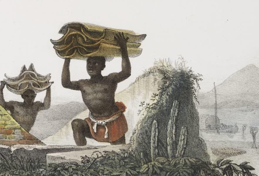 Voyage Pittoresque et Historique au Bresil Vol. 2 - Transport de Tuiles (1835)