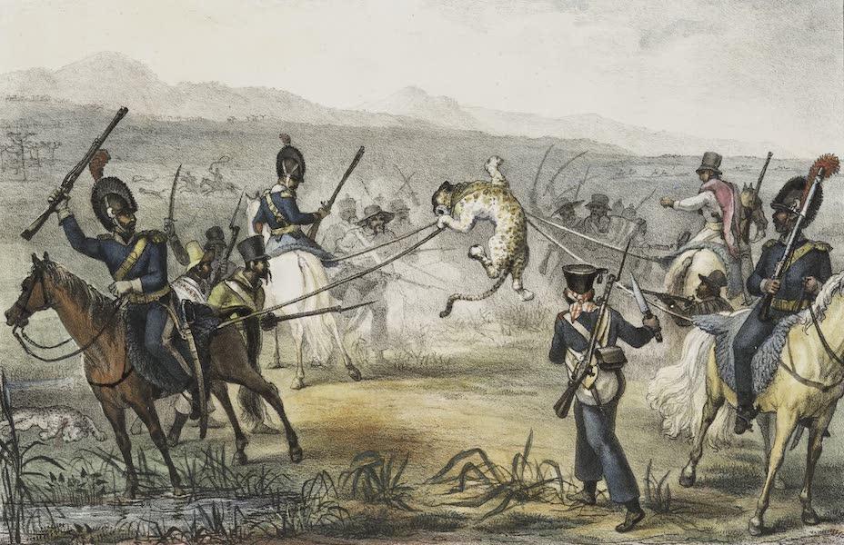 Voyage Pittoresque et Historique au Bresil Vol. 2 - Chasse au Tigre, dans la Plaine (1835)
