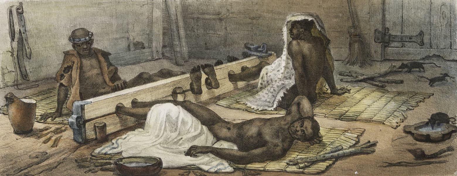 Voyage Pittoresque et Historique au Bresil Vol. 2 - Negres ao tronto (1835)