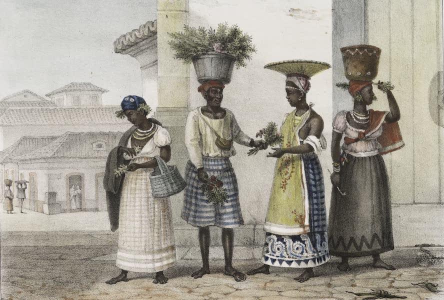 Voyage Pittoresque et Historique au Bresil Vol. 3 - Vendeur d'herbe de ruda (1839)