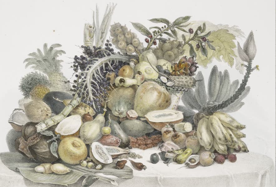 Voyage Pittoresque et Historique au Bresil Vol. 3 - Fruits du Brésil (1839)