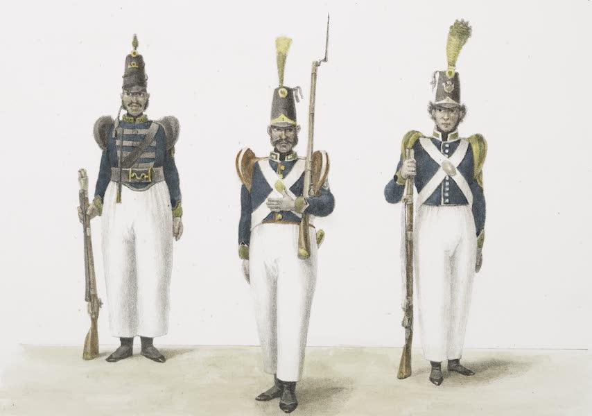 Voyage Pittoresque et Historique au Bresil Vol. 3 - Costume Militaire (1839)