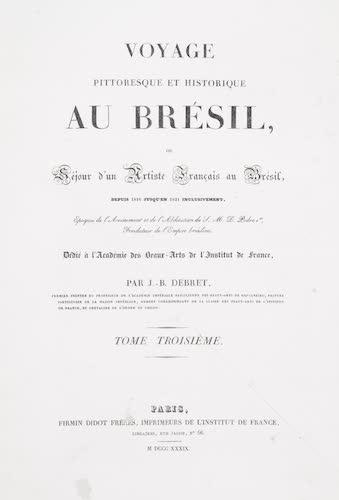 Natural History - Voyage Pittoresque et Historique au Bresil Vol. 3