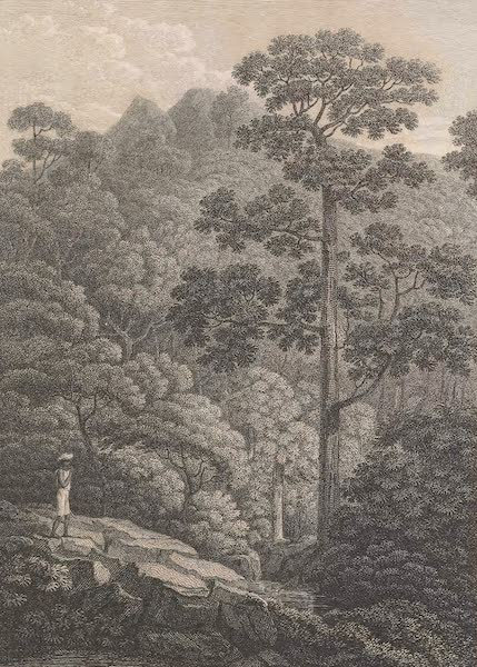 Voyages and Travels to India, Ceylon, the Red Sea, Abyssinia, and Egypt Vol. 1 - View of the Besselely Gaut (1809)