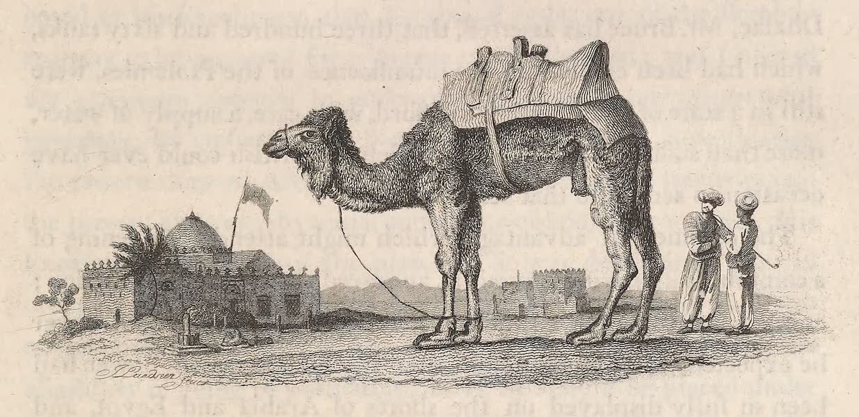Voyages and Travels to India, Ceylon, the Red Sea, Abyssinia, and Egypt Vol. 2 - A Schehch's Tomb in Arabia (1809)