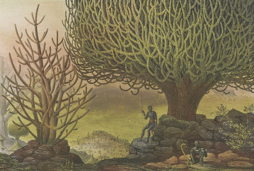 Voyages au Soudan Oriental et Dans l'Afrique Septentrionale - Planche 13. Vue de Kaçane. (1852)