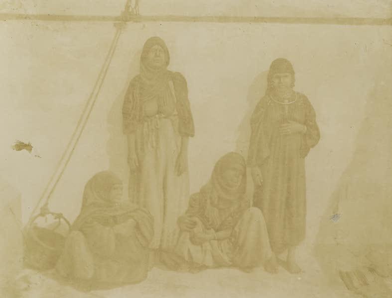 Voyages au Soudan Oriental et Dans l'Afrique Septentrionale - Planche 47. Femmes égyptiennes. (1852)