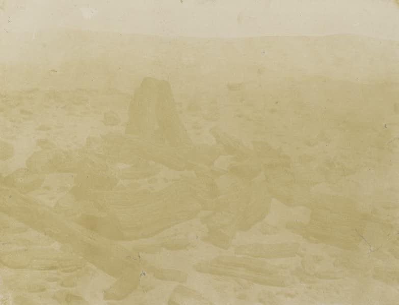 Voyages au Soudan Oriental et Dans l'Afrique Septentrionale - Planche 52. Débris de forêt pétrifiée. (1852)