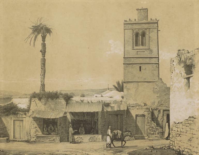 Voyages au Soudan Oriental et Dans l'Afrique Septentrionale - Planche 56. Vue pittoresque à Tunis. (1852)