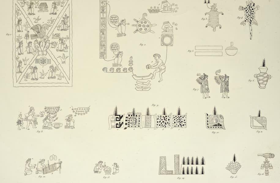Vues des Cordilleres et Monumens de l'Amerique - Peintures hieroglyphiques de la Raccolta di Mendoza [I] (1813)