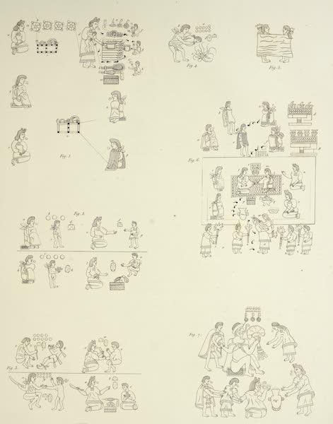 Vues des Cordilleres et Monumens de l'Amerique - Peintures hieroglyphiques de la Raccolta di Mendoza [II] (1813)