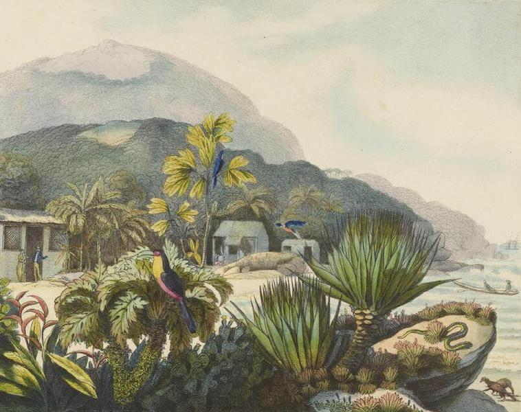 Vues et Paysages des Regions Equinoxiales - Bresil (1826)
