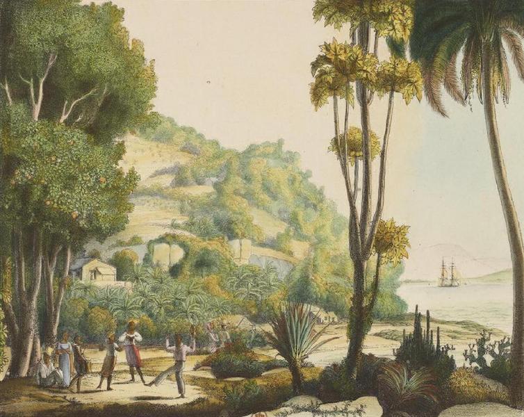 Vues et Paysages des Regions Equinoxiales - Vue de la cote de Bresil vis-a-vis de l'ile de Ste. Catherine (1826)