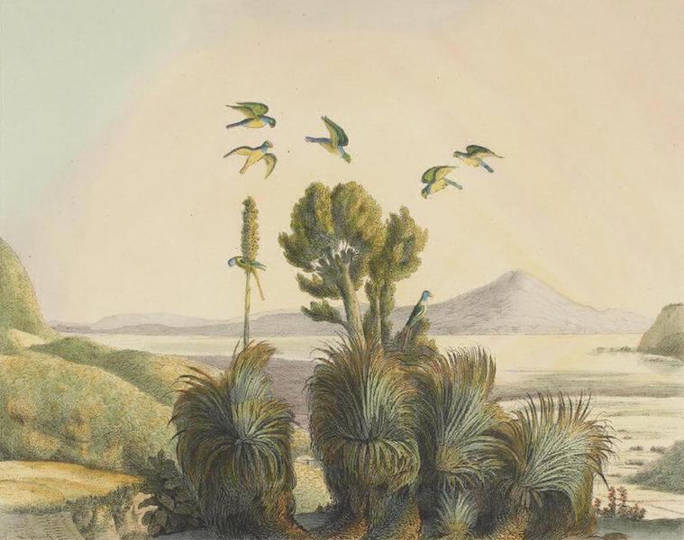 Vues et Paysages des Regions Equinoxiales - Vue des Montagnes de Biobio pres de la Ville de la Conception (Chili) (1826)