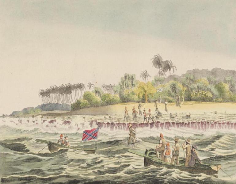 Vues et Paysages des Regions Equinoxiales - Debarquement a travers les Recifs de l'Isle de Romanzoff (1826)