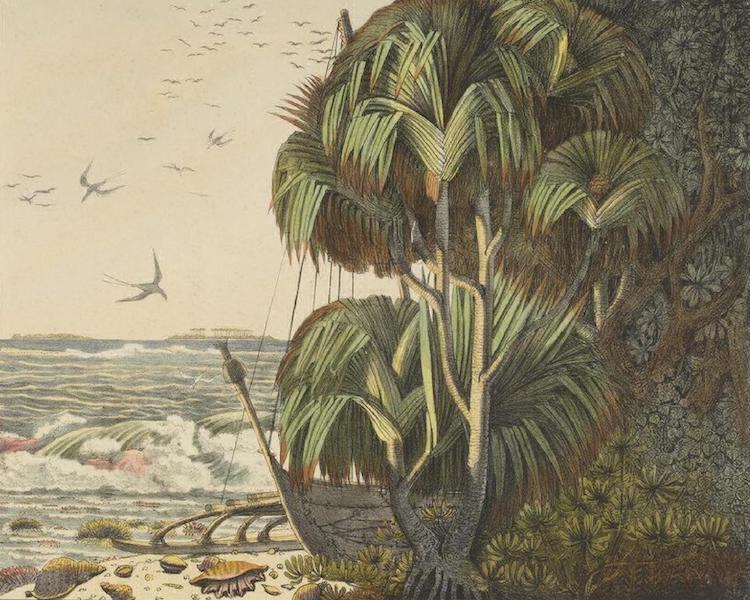 Vues et Paysages des Regions Equinoxiales - Vue des Iles Radak sous l'aspect du Vaquois (1826)