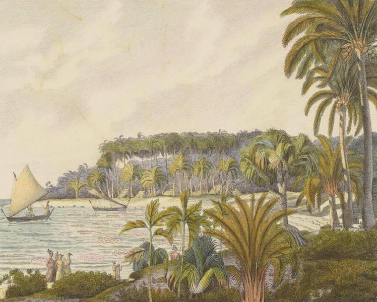 Vues et Paysages des Regions Equinoxiales - Vue des iles Radak avec les Palmiers de Cocos (1826)