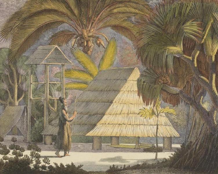 Vues et Paysages des Regions Equinoxiales - Vue dans les iles Radak (1826)