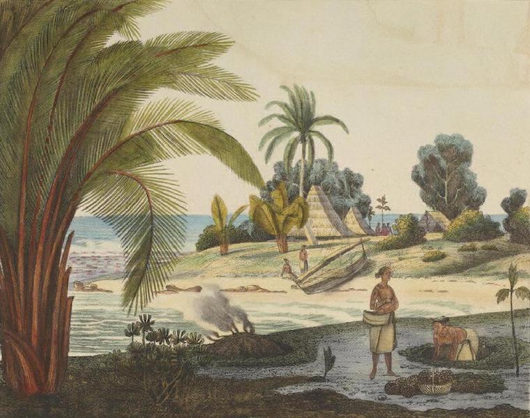 Vues et Paysages des Regions Equinoxiales - Iles Radak (1826)