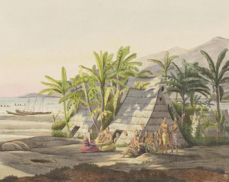 Vues et Paysages des Regions Equinoxiales - Vue dans les iles Sandwich (1826)