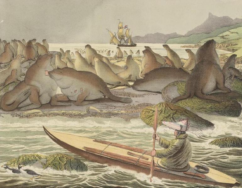 Vues et Paysages des Regions Equinoxiales - Vue de l'ile de St. Paul dans la mer de Kamtchatka (avec des lions marins) (1826)
