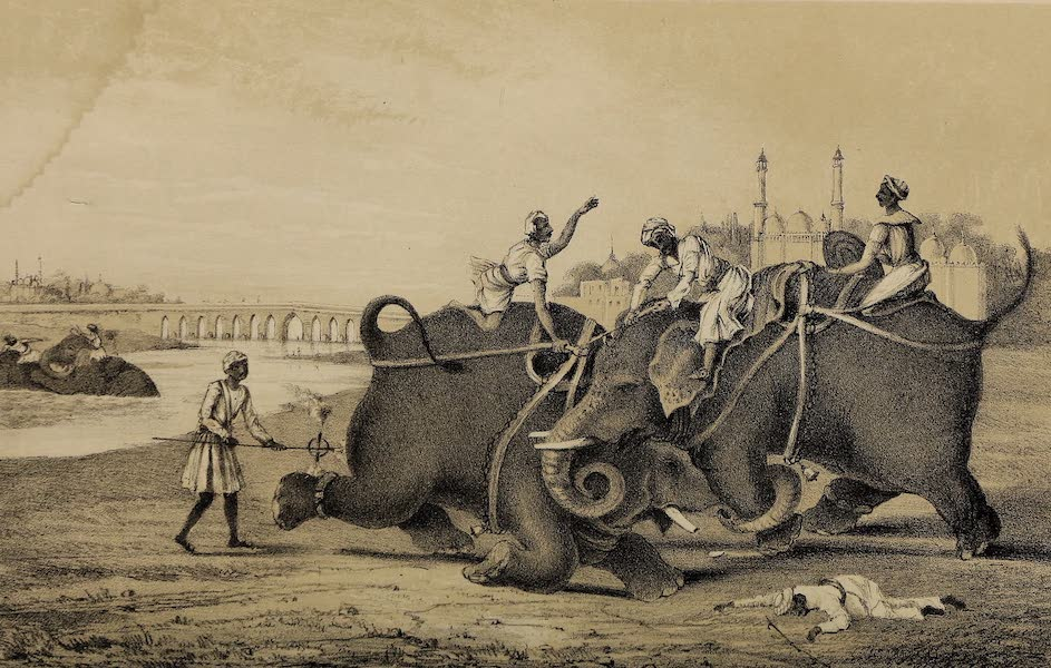 Wanderings of a Pilgrim, in Search of the Picturesque Vol. 1 - Elephant Fights (1850)