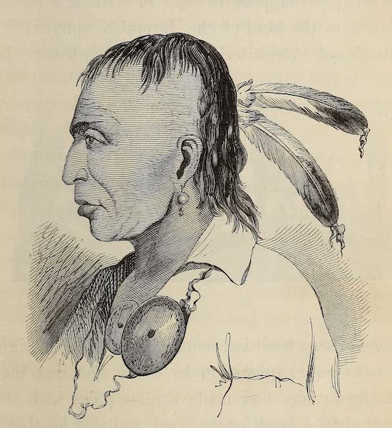 Wanderings of an Artist among the Indians of North America - Portrait of Aw-bon-waish-kum (1859)