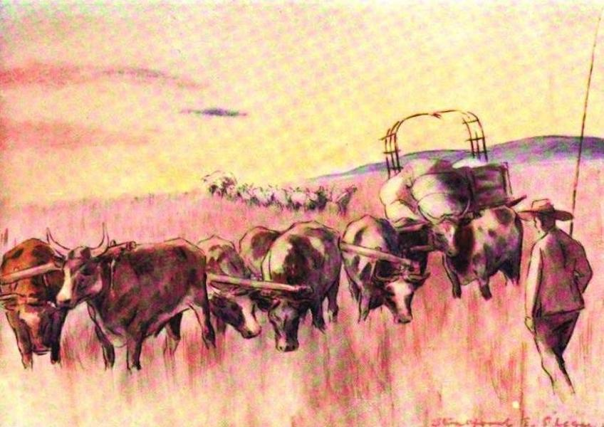 War Sketches in Colour - Captured Boer Waggons (1903)
