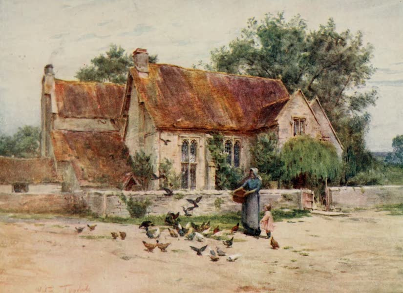 Wessex Painted and Described - Woodlands near Mere, Wilts (1906)