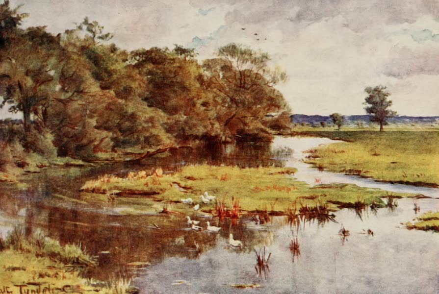 Wessex Painted and Described - The Frome from Bockhampton Bridge. View from Lower Mellstock Bridge,