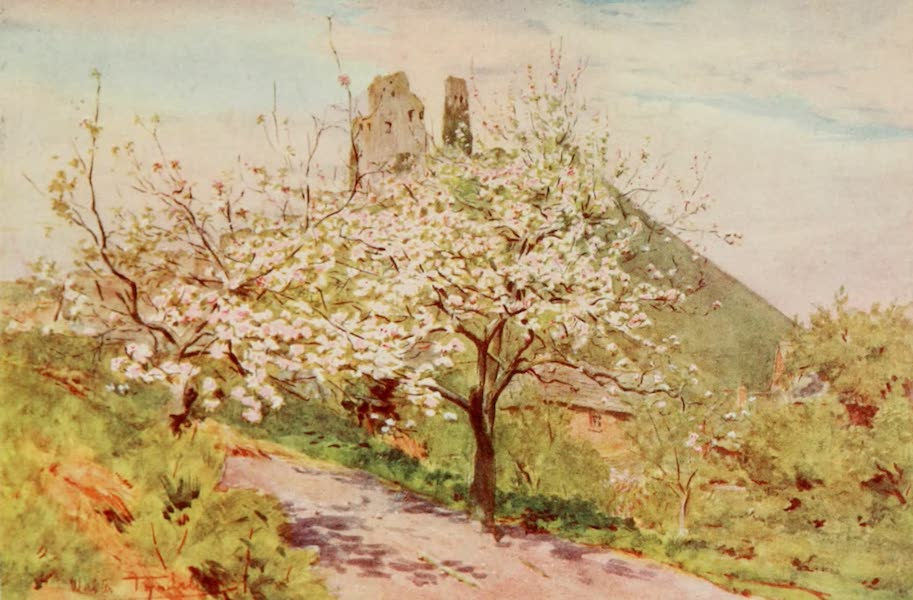 Wessex Painted and Described - Spring in Wessex (1906)
