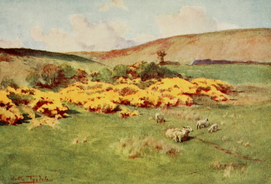 Wessex Painted and Described - Summer in Wessex (1906)