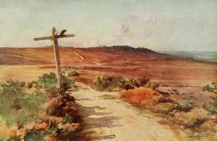 Wessex Painted and Described - Bere Heath in Autumn, with Gallows Hill in the distance. The