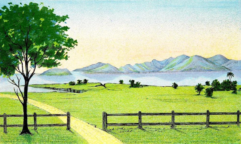 Wild life in Canara and Ganjam - Bay of Belikeri (1885)