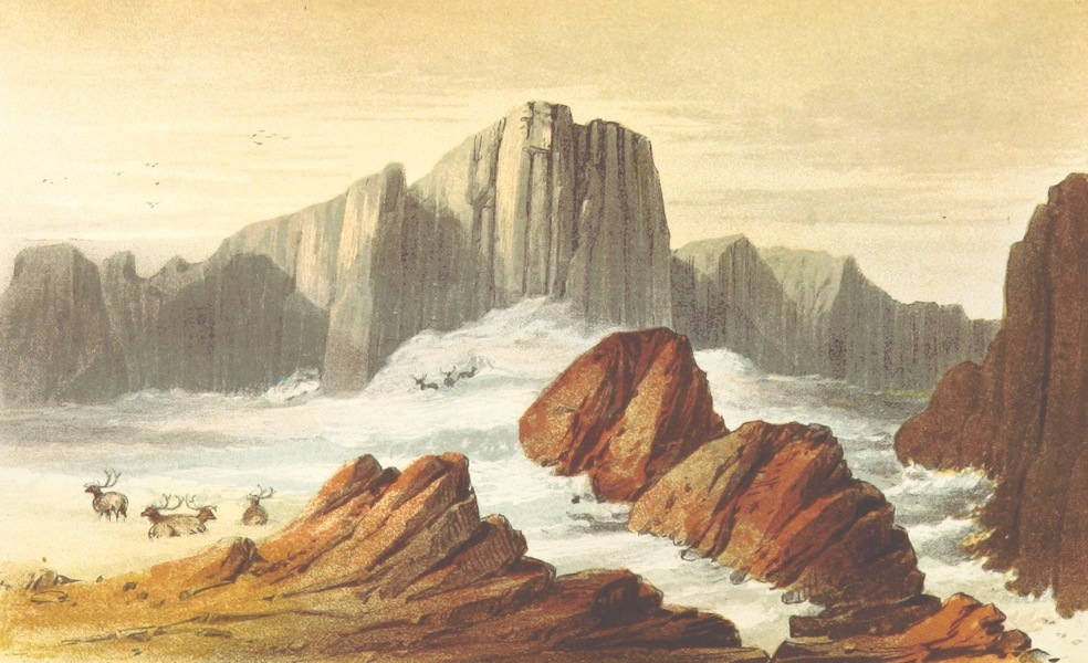 Wild Life on the Fjelds of Norway - Leirungs Braeen (1861)