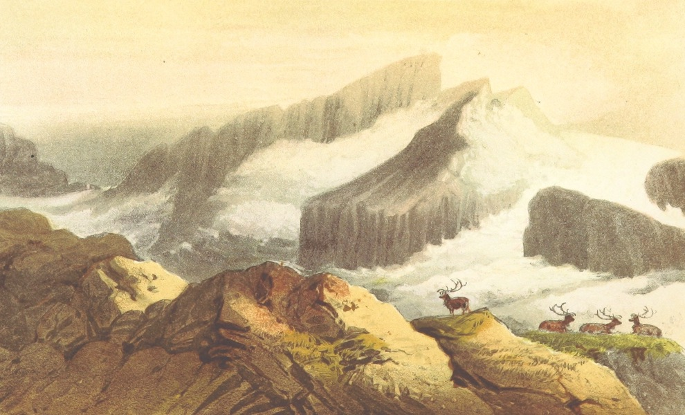 Wild Life on the Fjelds of Norway - Rauhammer (1861)