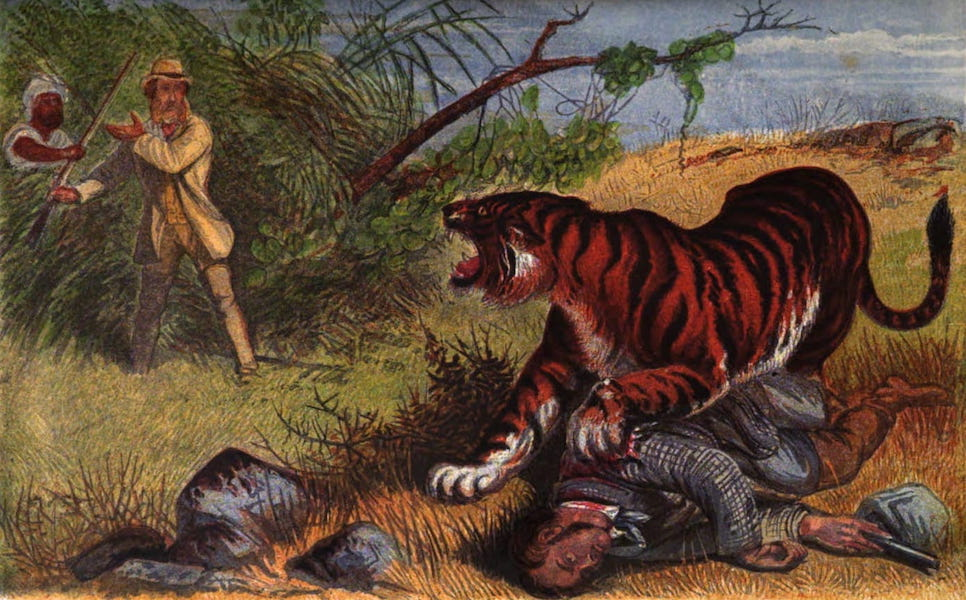 Wild Sports of the World - Lieutenant Rice and the Tiger (1862)