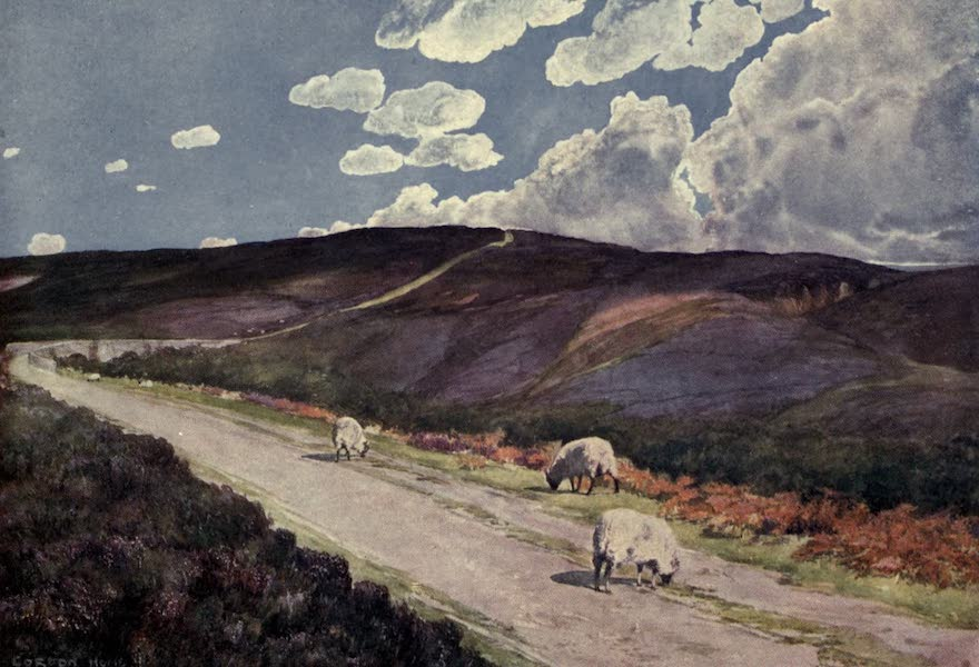 Yorkshire Coast and Moorland Scenes Painted and Described - Goathland Moor (1904)