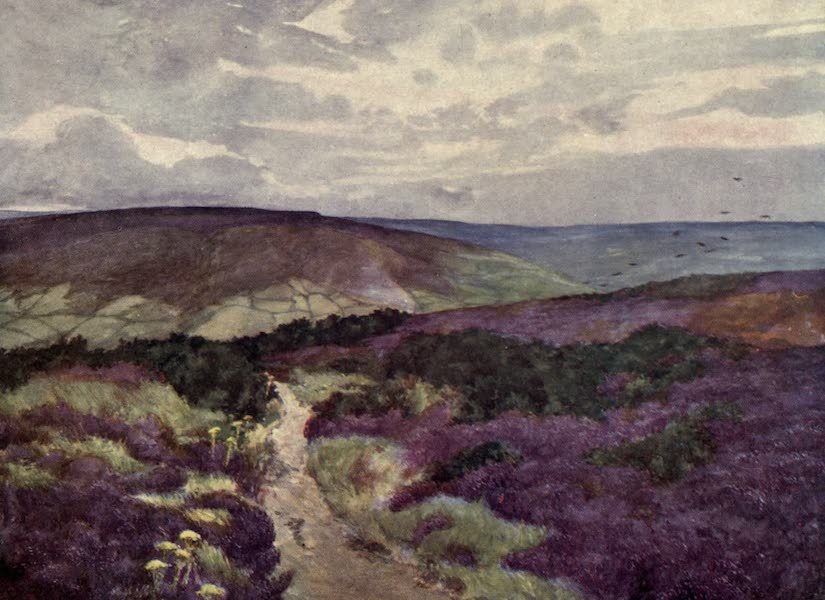 Yorkshire Coast and Moorland Scenes Painted and Described - Sleights Moor from Swart Howe Cross (1904)