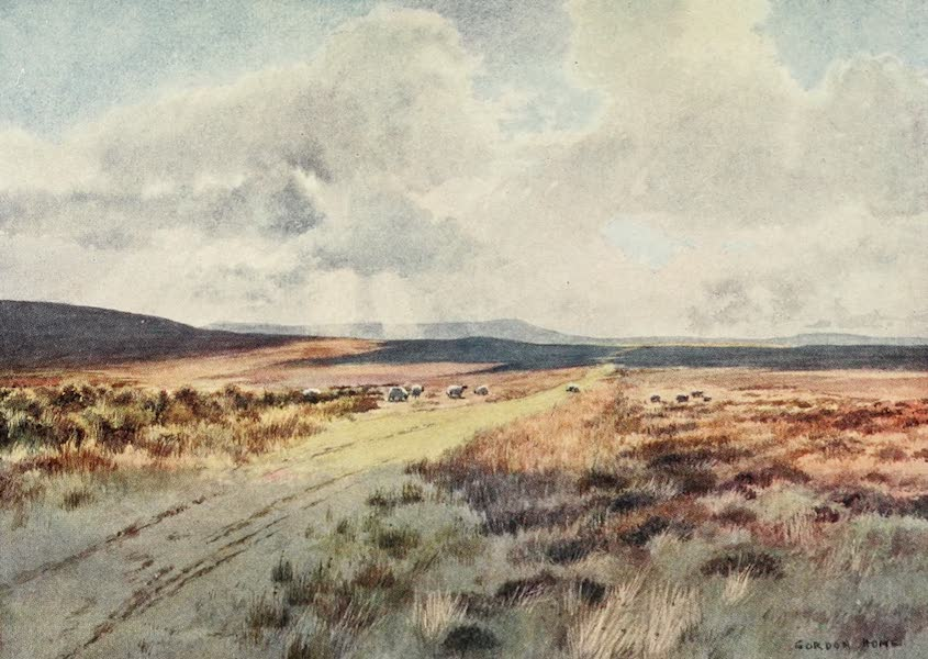 Yorkshire Dales and Fells Painted and Described - Downholme Moor, above Swaledale (1906)