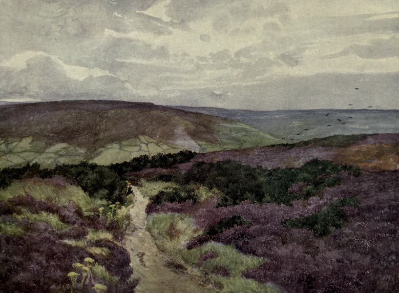 Yorkshire Painted and Described - An Autumn Scene on the Esk (1925)