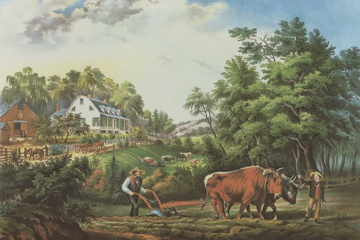 History Archive - Farming Collection