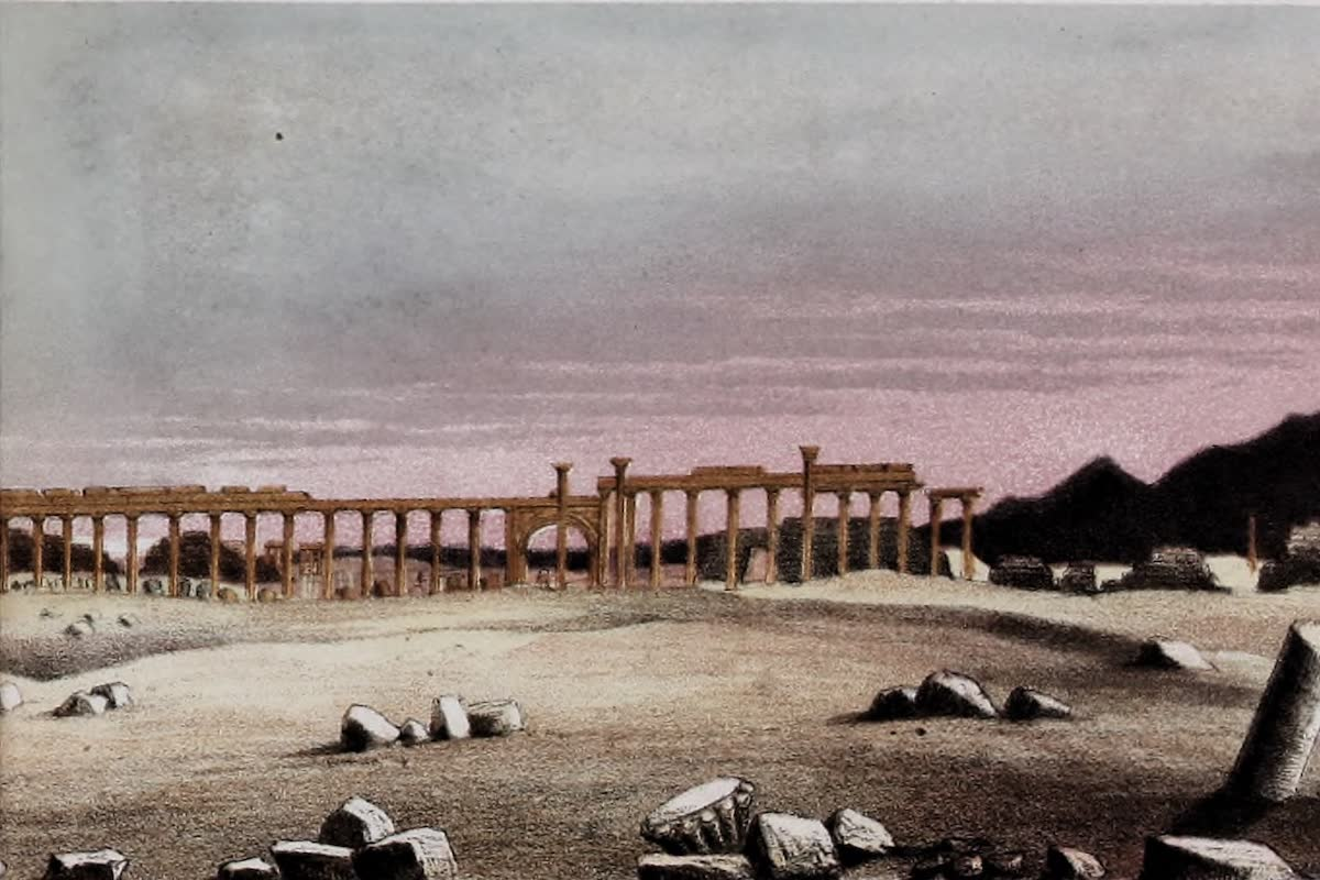 History Archive - Palmyra Collection
