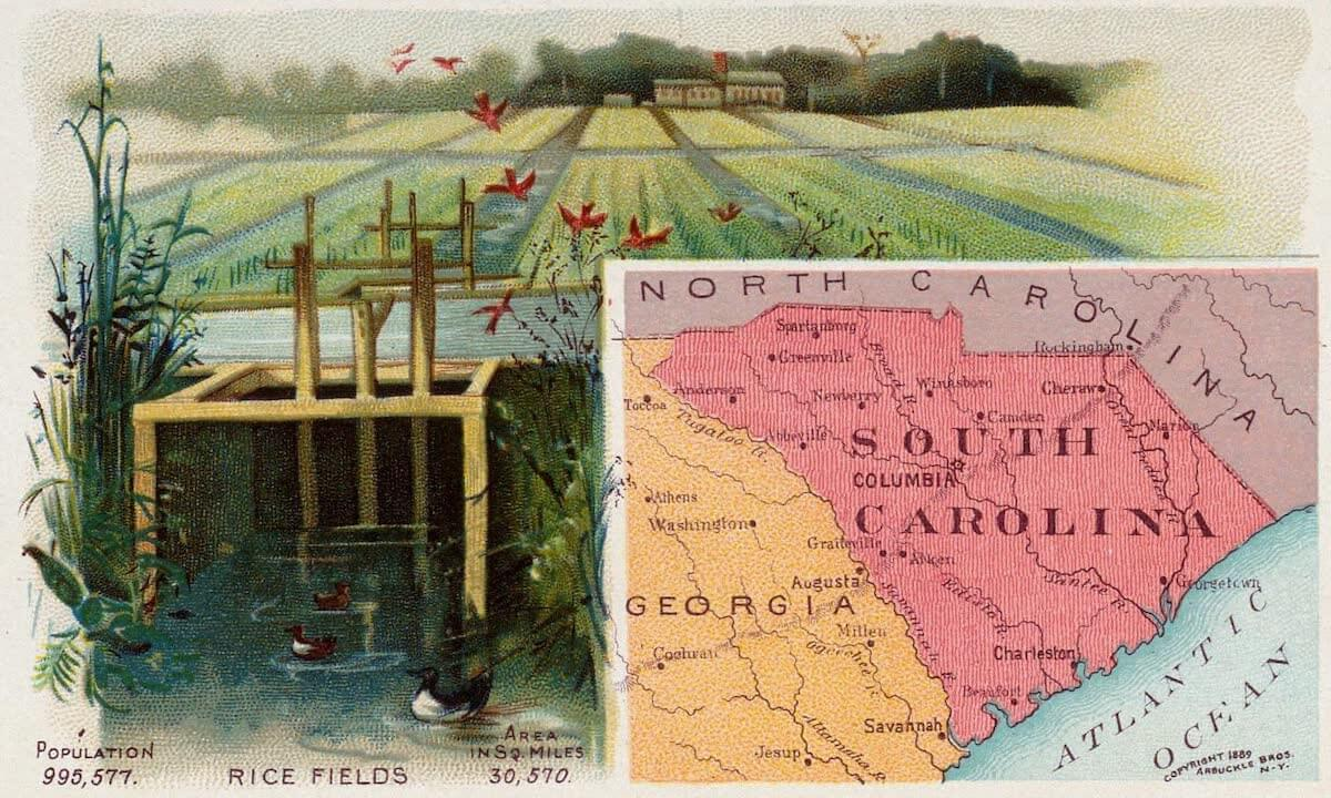History Archive - South Carolina Collection