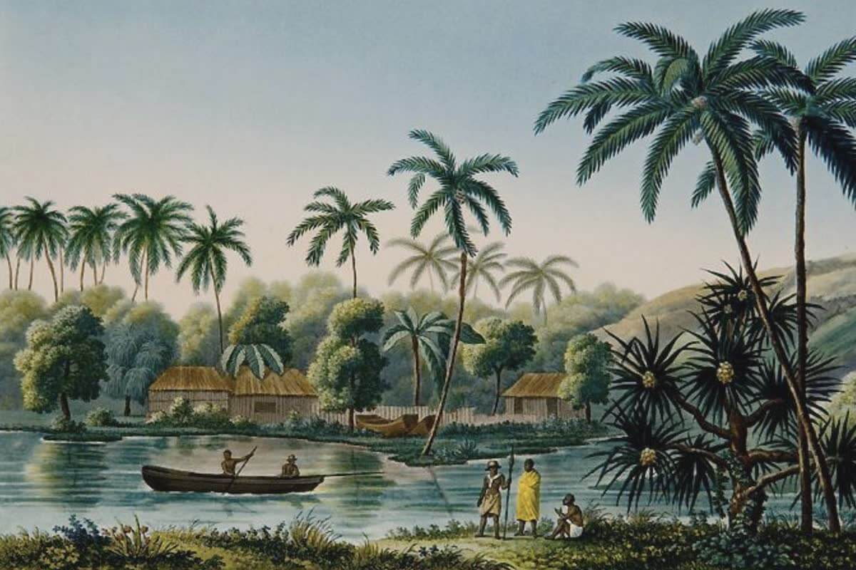 History Archive - Tahiti Collection