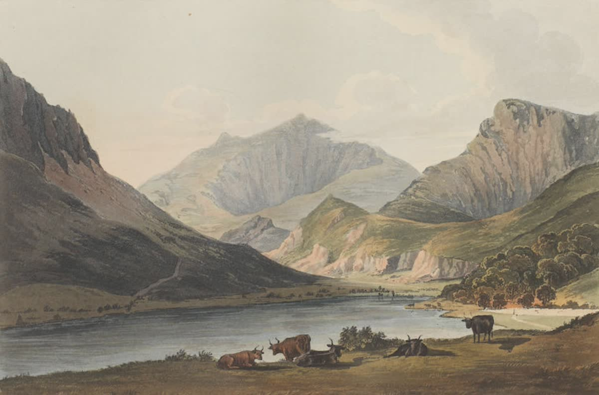 History Archive - Wales Collection