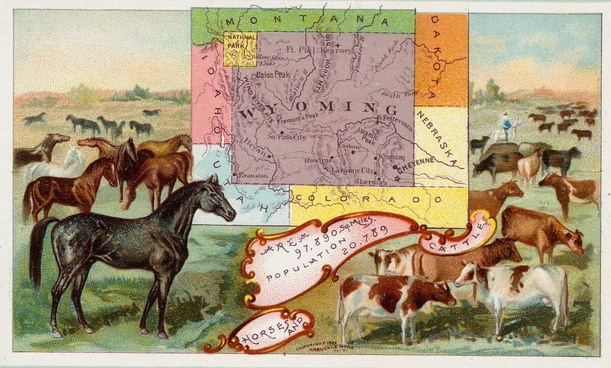 History Archive - Wyoming Collection